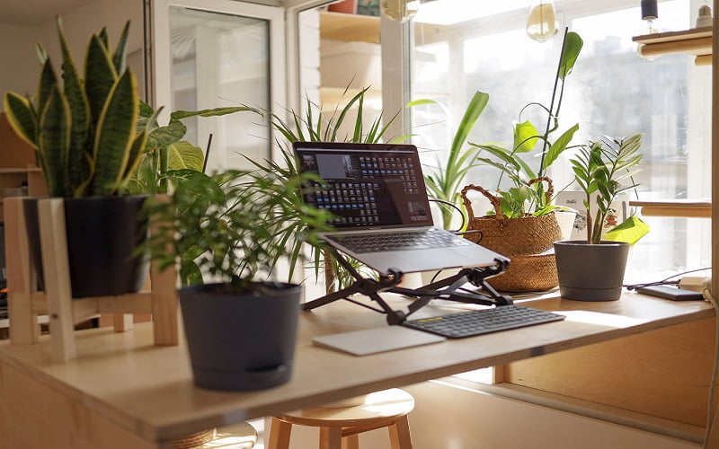 Ways To Working from Home Jobs